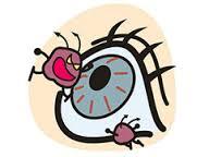 生まれつきの目の病気2